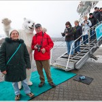 Cruise Ship Polar Bear, Svalbard