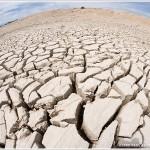 Cracked Mud,  Etosha National Park, Namibia