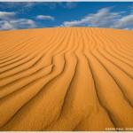 Kalahari Desert, Kgalagadi Transfrontier Park, South Africa